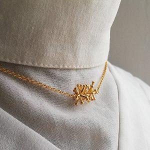 coralito collar
